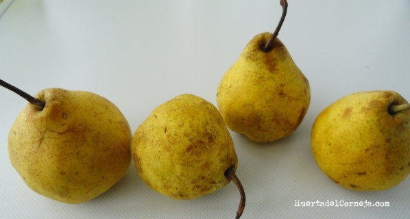 Peras maduras de este año