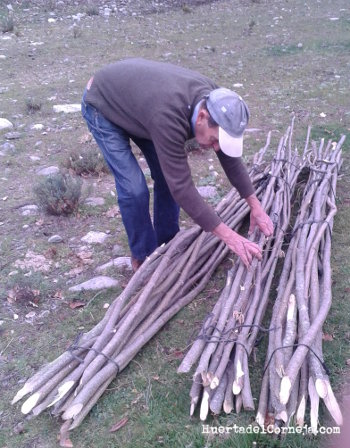 Preparando las varas nuevas