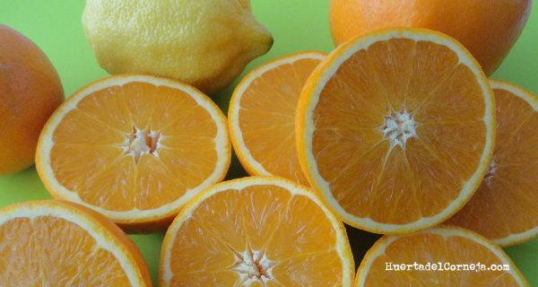 naranjas y limones partidos a la mitad