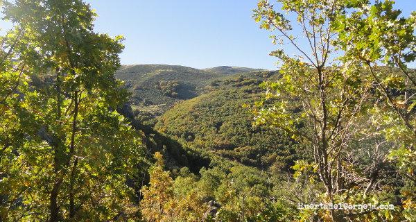 Cuenca de recepción y barranco del arroyo de Navacavera