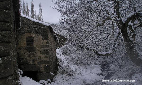 Nogal y molino en la garganta Las Marías (Ávila)