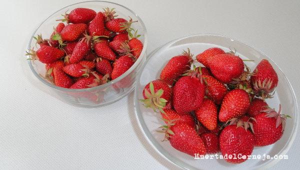 Fresones y fresas