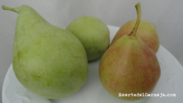 Nuestras dos variedades de peras de Aranjuez.